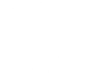 KLM Properties Logo -  light version